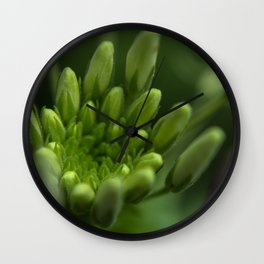 Inside Section of Cleome Wall Clock