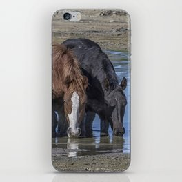 Mustangs Sharing What's Left of the Water iPhone Skin