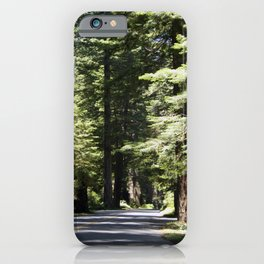 Humboldt State Park Road iPhone Case