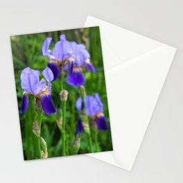 Iris Parade Stationery Cards
