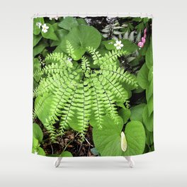 Maidenhair Fern, Adiantum Pedatum, And Friends Shower Curtain