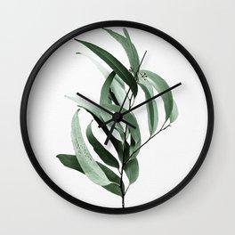 Eucalyptus - Australian gum tree Wall Clock