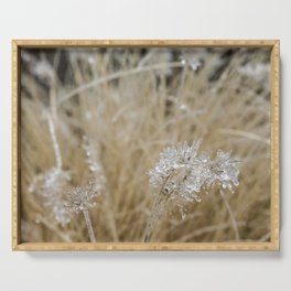 Icicles on Ornamental Grass, No. 1 Serving Tray