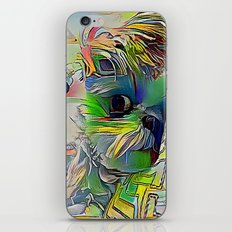 Colorful Angie iPhone & iPod Skin