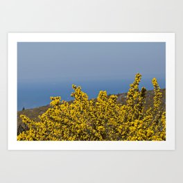 Landscape on mountain with blue sky Art Print
