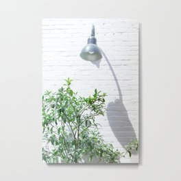 Street photography lamp & tree II Metal Print