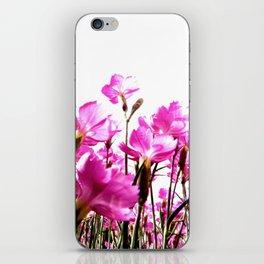 Carthusian Pink iPhone Skin