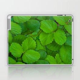 Holy Basil Tulsi Green Mint Leaves Laptop & iPad Skin
