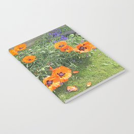 South winds jostle them; poppies in the garden Notebook