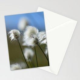 Fiori Stationery Cards