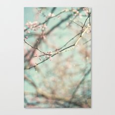 spring #3 (cool bleu) Canvas Print