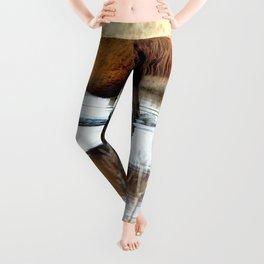 Watercolor Horse 66, Assateague Pony, Assateague, Maryland, Swim, Swim, Swim 'Lil Pony Leggings