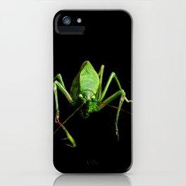 Green Katydid iPhone Case