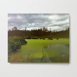 St Catherine Creek Wildlife Refuge - Natchez MS Metal Print