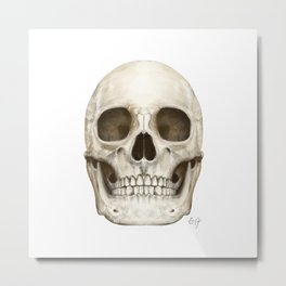 Digital Skull Painting Metal Print