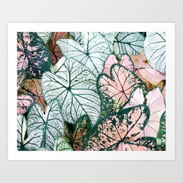 Angel Wings Foliage Art Print