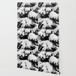 Snow Covered Fir Tree Wallpaper