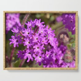 Sparkle Purple Petals by Reay of Light Photography Serving Tray