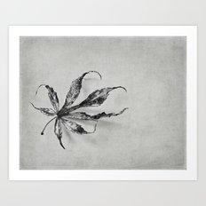 a leaf Art Print