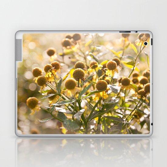 Flowers in Mt. Rogers, Virginia Laptop & iPad Skin
