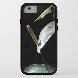 """Spathiphyllum cannifolium - """"pride"""" iPhone Case"""