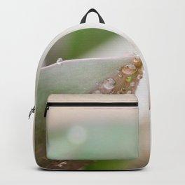 April Showers Backpack