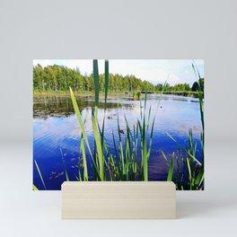 Duck Pond Mini Art Print