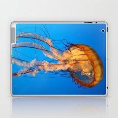 Jellyfish in Color Laptop & iPad Skin