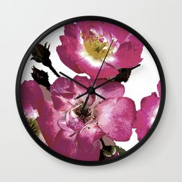 I can see my lover singing Wall Clock