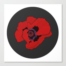 Poppy time Canvas Print
