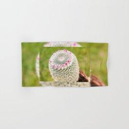 Cactus flowering pink detail blossoms Hand & Bath Towel