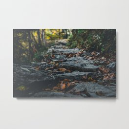 Nature photo - pathway of rocks Metal Print