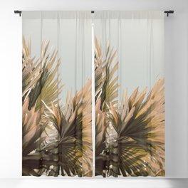 Light Magic - Tropical Photograph Blackout Curtain