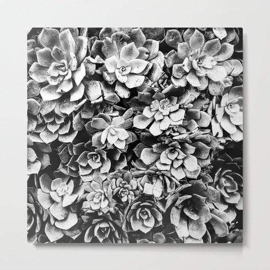 Black And White Plants Metal Print