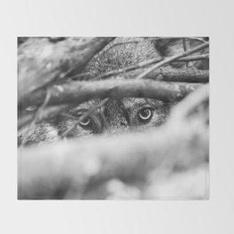 Wild Eyes Wolf Edition Throw Blanket