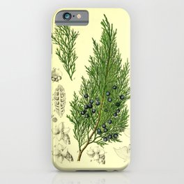 Botanical Juniper iPhone Case