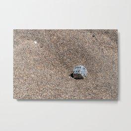 A Die in the Sand Metal Print