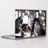 kittens Laptop & iPad Skins featuring Adorable Kittens by Christy Leigh