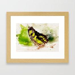 Friendly Butterfly Framed Art Print