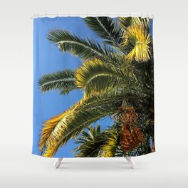 Palms Of France Shower Curtain