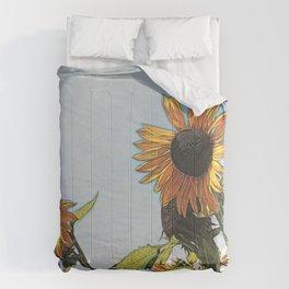 Sunflower Daze Comforters