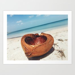 Coconuts and the sea Art Print