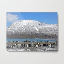 Snowy mountain with King Penguins in the Foreground Metal Print