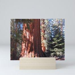 Giant Sequoia Mini Art Print