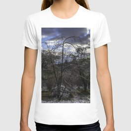 Trees in the morning T-shirt