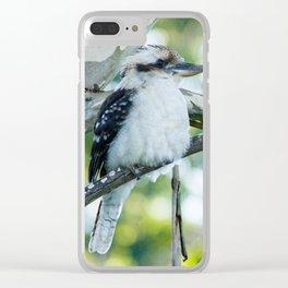 Laughing Kookaburra Clear iPhone Case