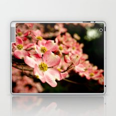 Close Encounter on a Spring Day Laptop & iPad Skin