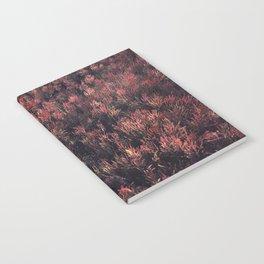 Glasswort Notebook