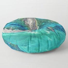 Ice Scours the North Caspian Sea Floor Pillow