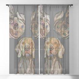 Triple Hunting Dogs in Dark Sheer Curtain